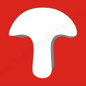 ciuperca-polistiren