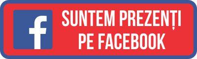 Totul Din Polistiren pe Facebook